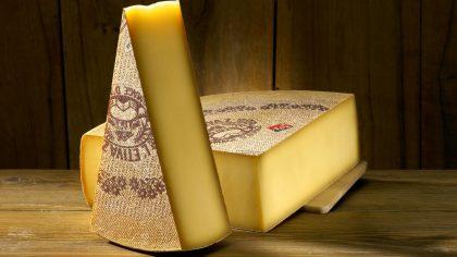 cheese Factory Activity Piccoli Virtuosi