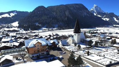 Beautiful Saanen